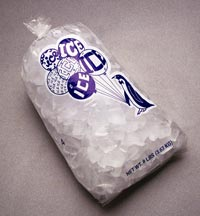10# Printed Ice Bag - 10.5 x 22 1.5 mil (1000)